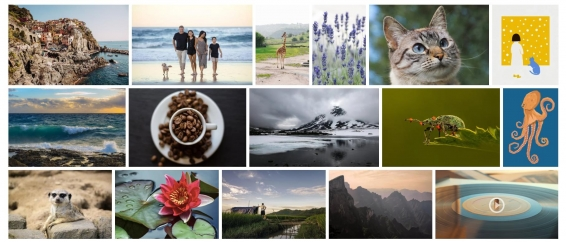 Examples of free photos from the Pixabay photo stock